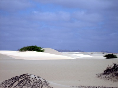 Desert Viana on the island of Boa Vista, Cape Verde