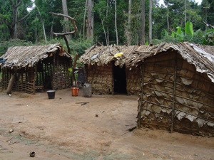 Pygmy huts, Central African Republic